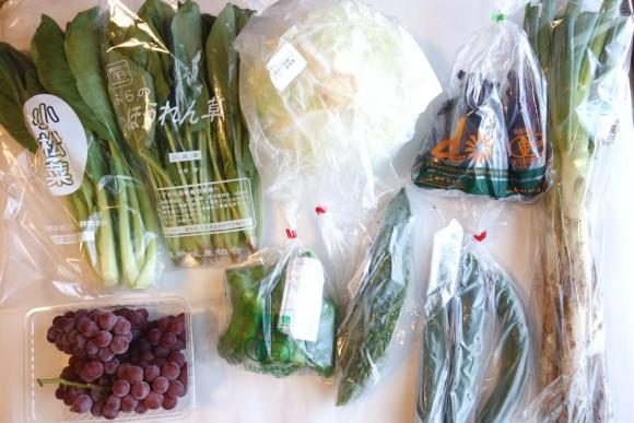 大地宅配(大地を守る会)の有機野菜定期コース_8月第1週 (4)