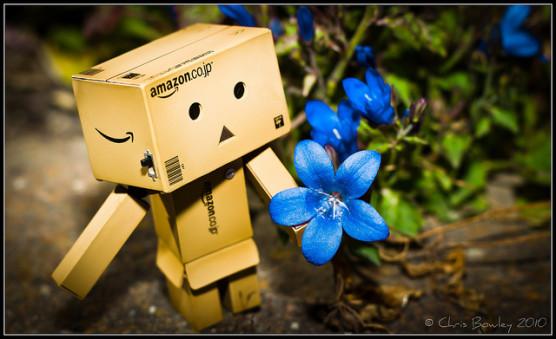 amazonの写真
