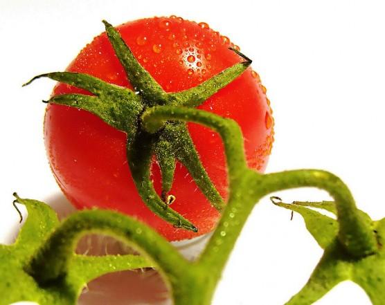 有機野菜 (1)