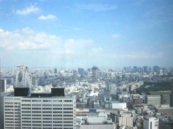 東京都庁 (4)