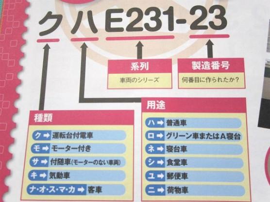 電車の博物館・公園に行こう (1)