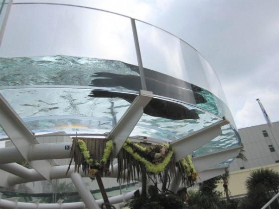 池袋_サンシャイン水族館 (1)