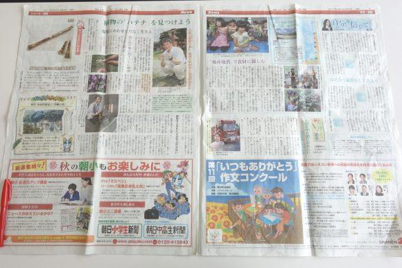 朝日小学生新聞の内容