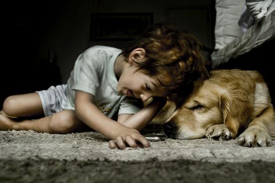 子供と犬の写真