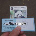 上野動物園の再入園券