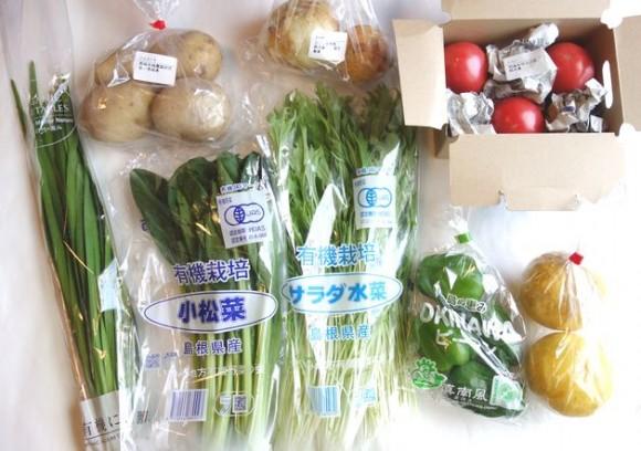 大地宅配の子供たちへの安心野菜セットの評判