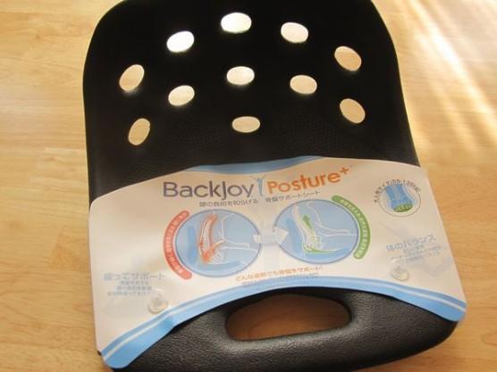 Backjoy1 556x417