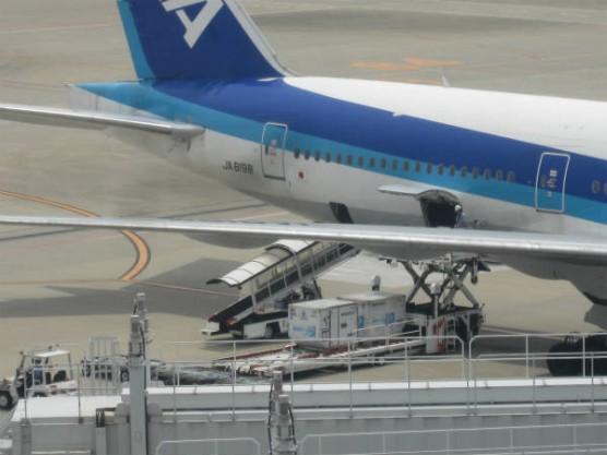 羽田空港国内線第2ターミナル (6)