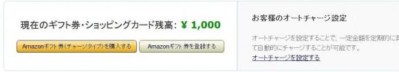 ブイプリカの使い道_アマゾンギフト券への交換手順 (9)