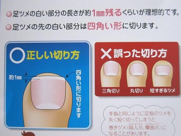 正しい爪の切り方2
